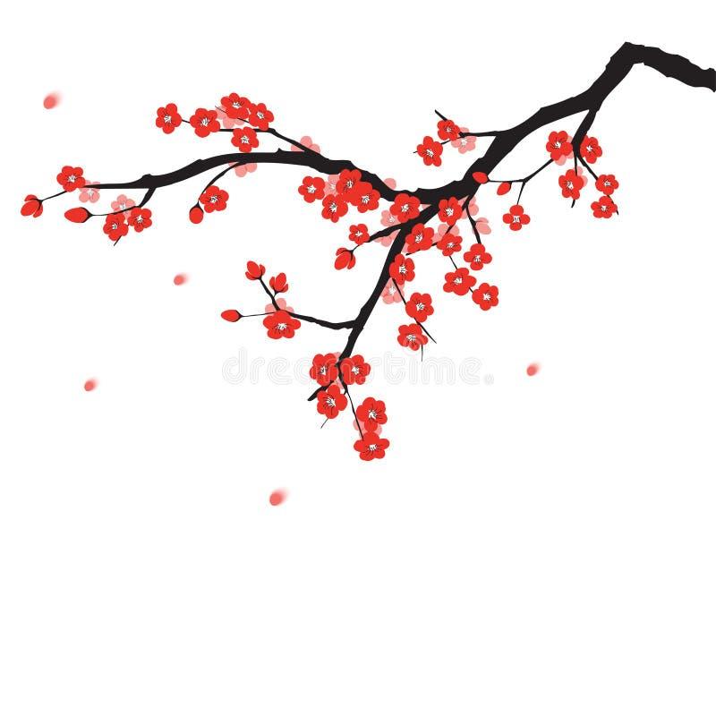 Plommonblomning vektor illustrationer
