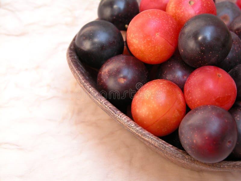Download Plommoner arkivfoto. Bild av frukt, frukter, sommar, plommon - 225290