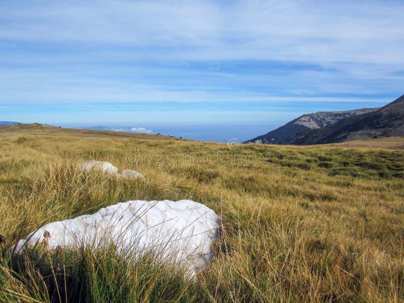 PlommonGuillem den lilla platån som lokaliseras i den östliga delen av Pyreneesna med vit marmor, Canigou massiv, Pyrenees-Orient arkivbilder
