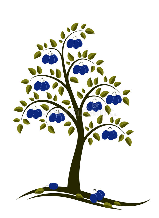 plommontree stock illustrationer
