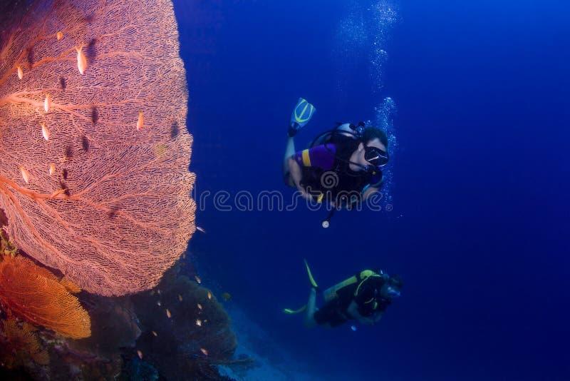 Plongée à l'air en Thaïlande images stock