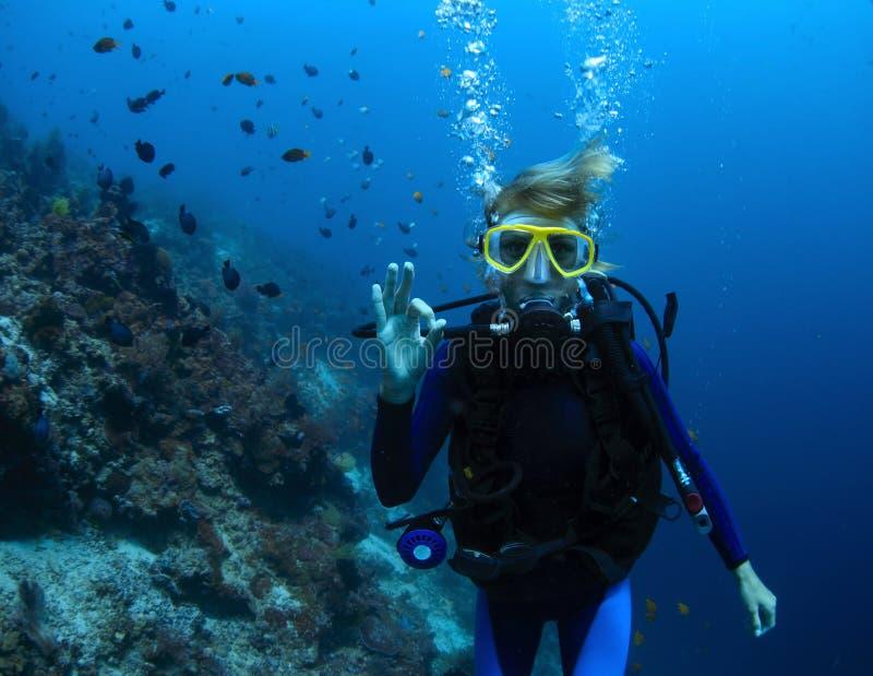 plongeur photo stock