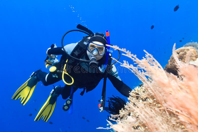 Plongeur autonome images libres de droits