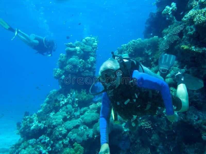 Plongeur autonome et corail image stock