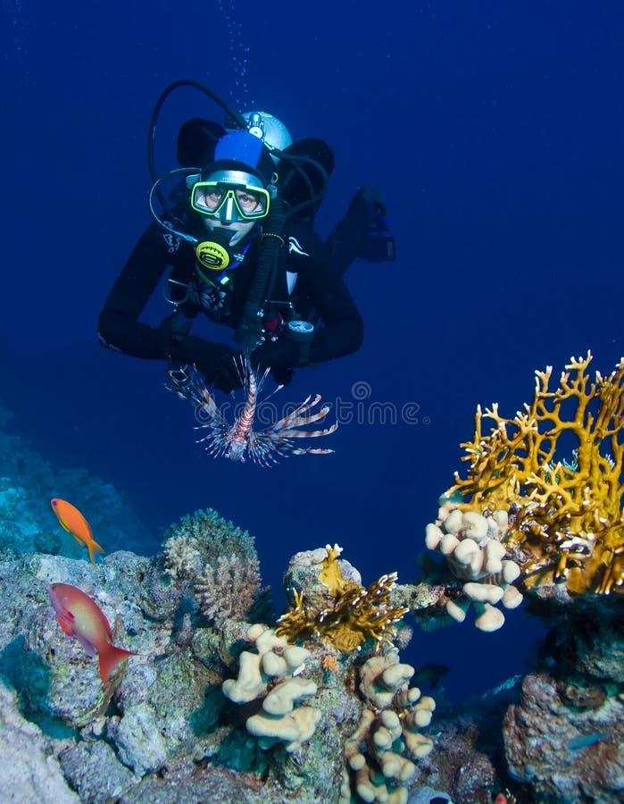 Plongeur autonome féminin image stock