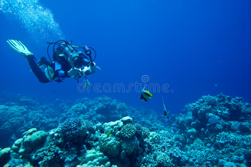 Le plongeur autonome prend la photo sous-marine photos stock