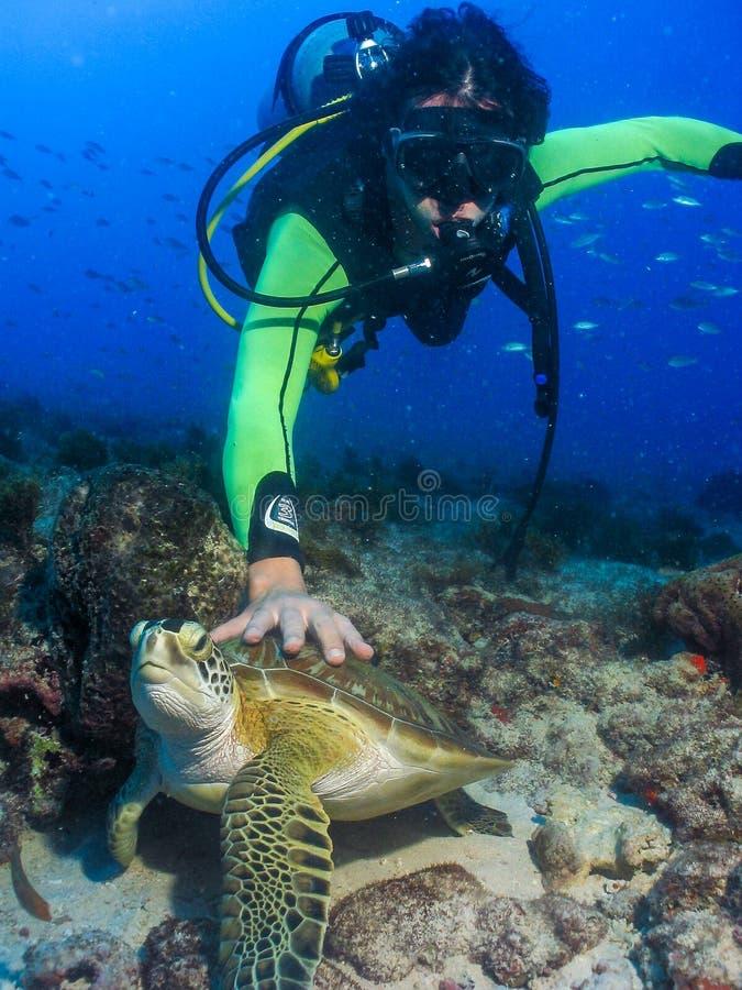 Plongeur autonome touchant la tortue sous l'eau photographie stock