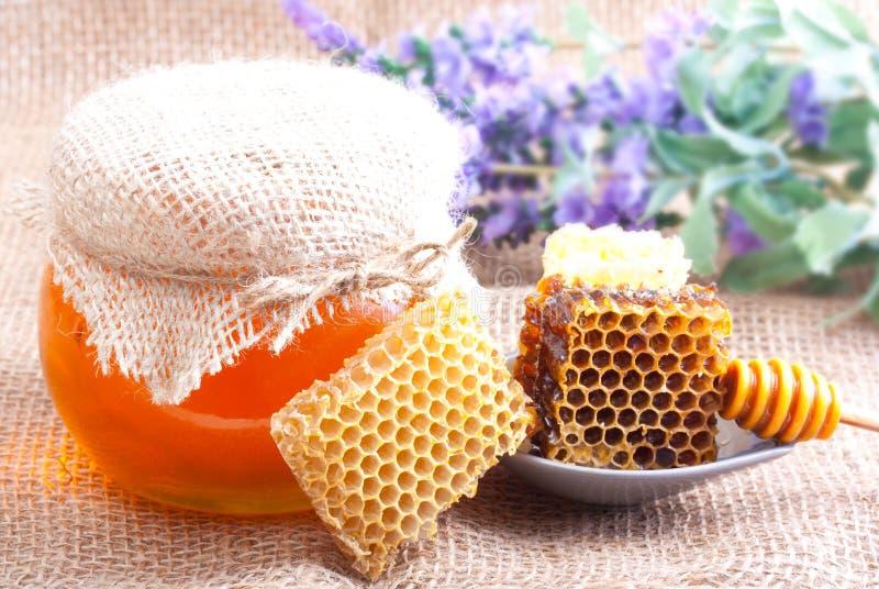 Plongeur, cuvette et nid d'abeilles en bois images stock