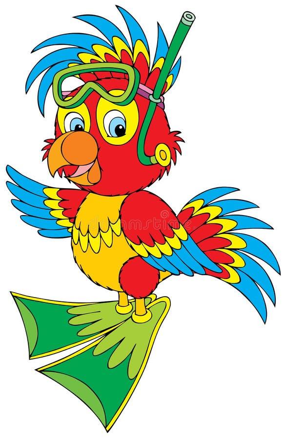 Plongeur de perroquet illustration stock