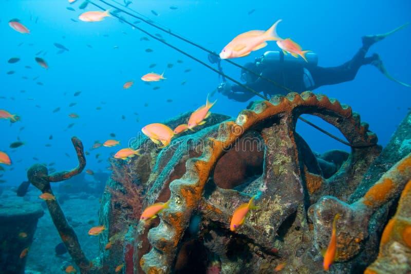 Plongeur et épave photo stock