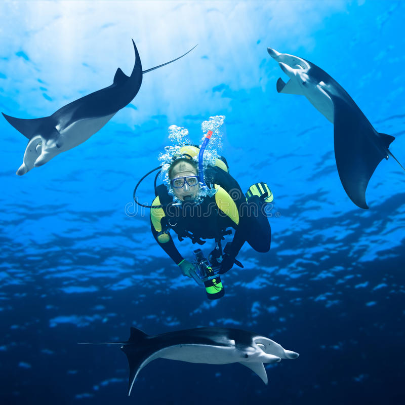 Plongeur et Manta photographie stock