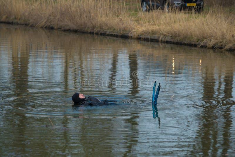 Plongeur flottant dans l'eau photographie stock libre de droits