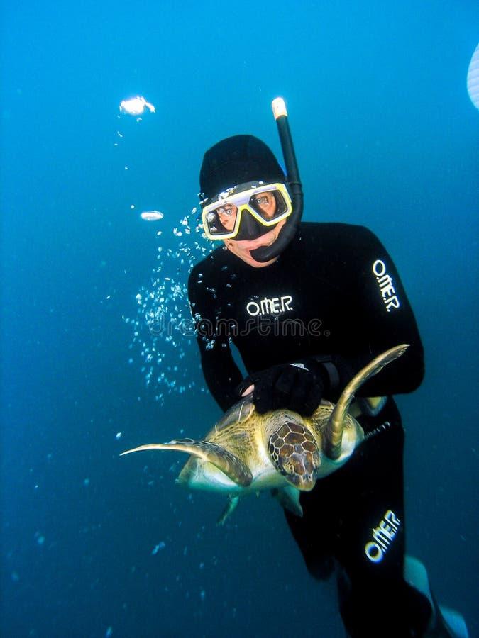Plongeur libre de Projeto TAMAR capturant la tortue de mer photos stock
