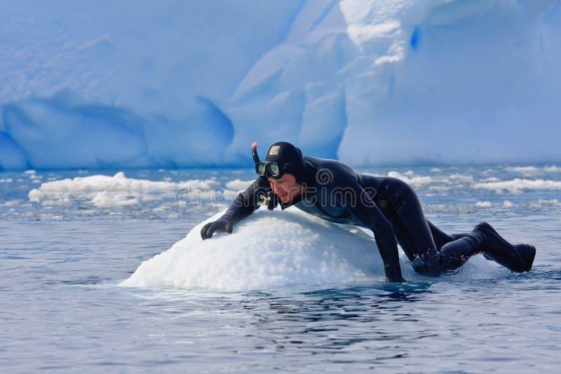 Plongeur sur la glace photo libre de droits
