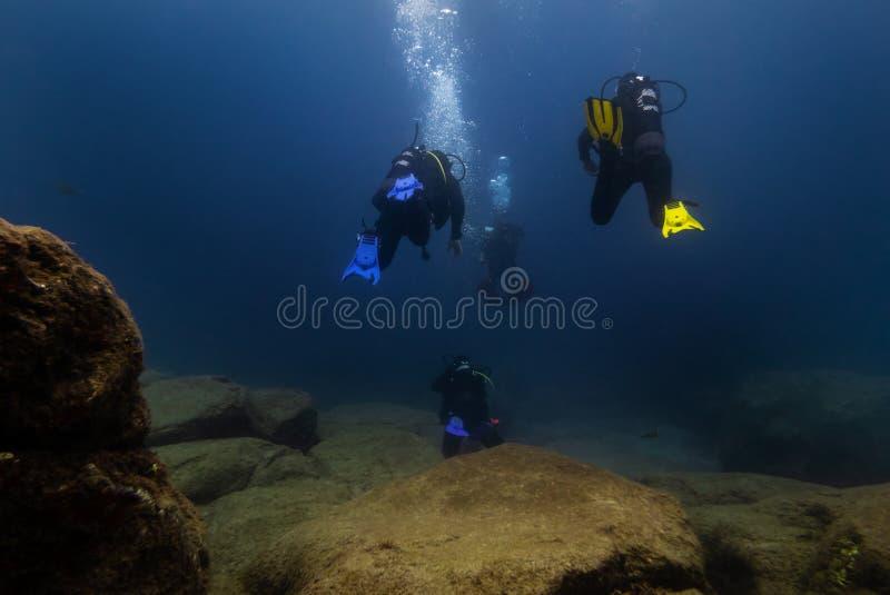 plongeurs photos libres de droits