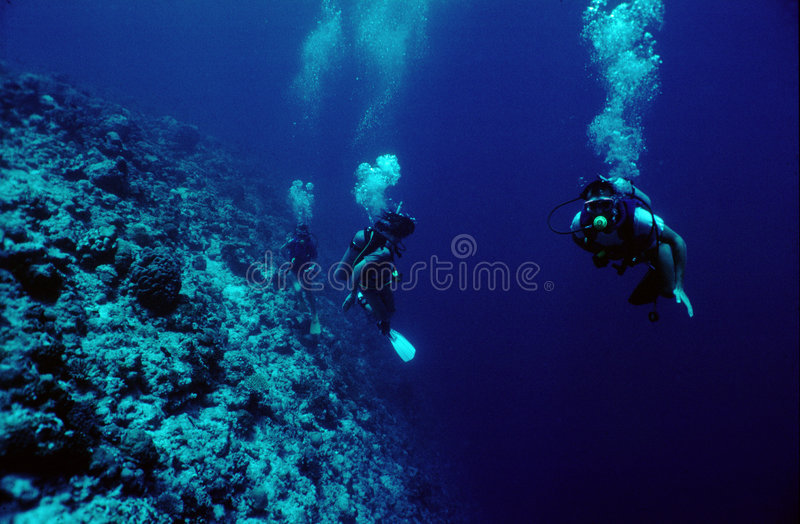 Plongeurs photo stock