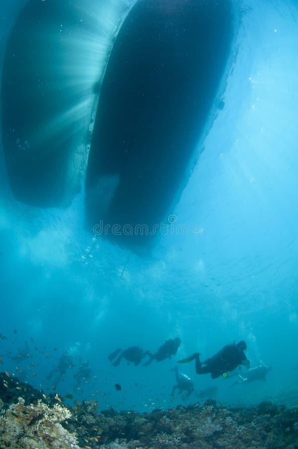 Plongeurs autonomes au-dessus du récif coralien images libres de droits