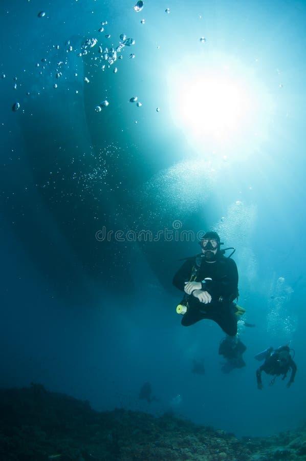 Plongeurs autonomes au-dessus du récif coralien photos libres de droits