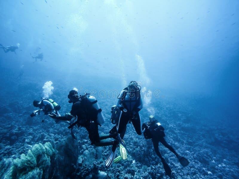 Plongeurs autonomes descendant au fond photos libres de droits