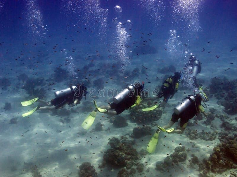Plongeurs avec le guide photos stock