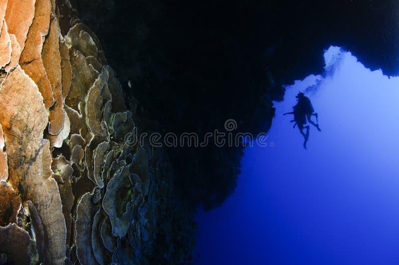 Plongeurs explorant le trou bleu image libre de droits