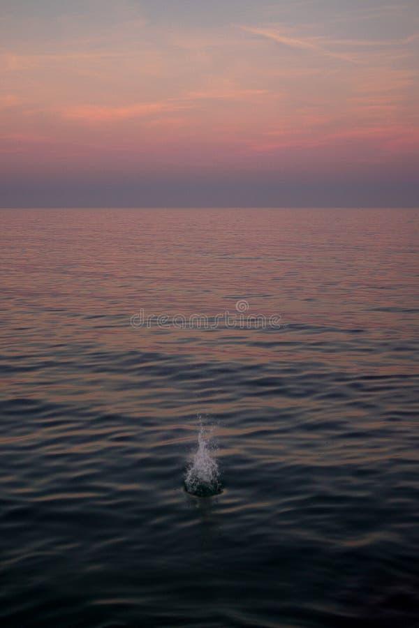 Plons in de Middellandse Zee stock afbeeldingen