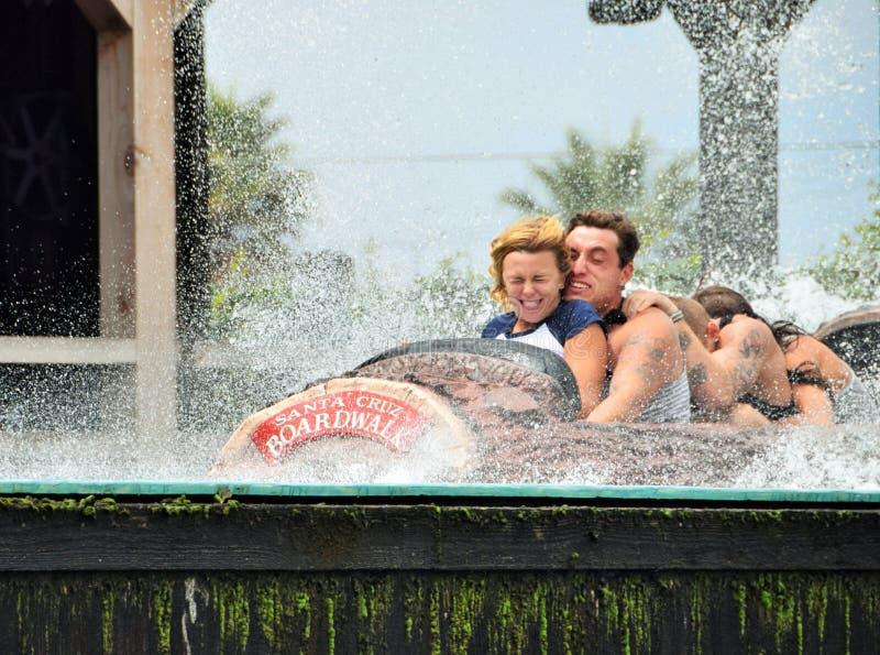 Plons die in Santa Cruz Beach Boardwalk landen royalty-vrije stock foto