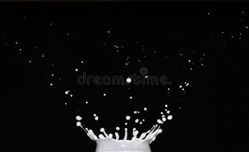 Plons van melk stock foto's
