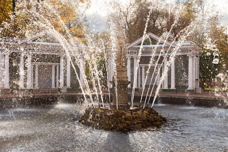 Plonsen van water van een fontein in het park van Peterhof, subur stock afbeelding