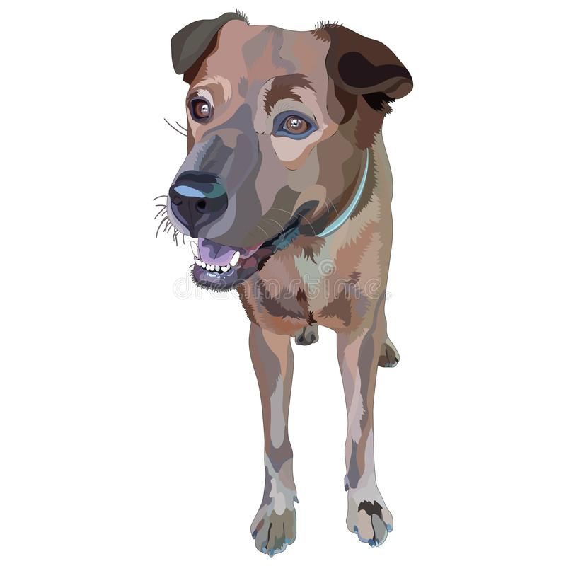 Plott Hound illustrazione di stock