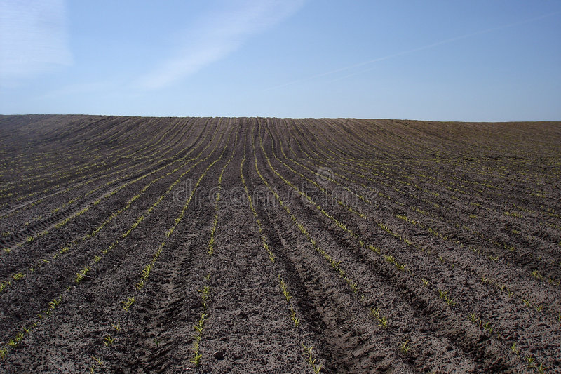 Plough land stock photos