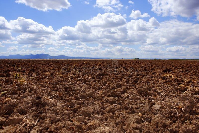 Plough Plowed Brown Clay Field Blue Sky Horizon Royalty Free Stock Image
