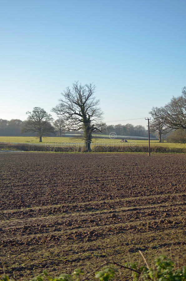 Ploughed farm field. stock photos