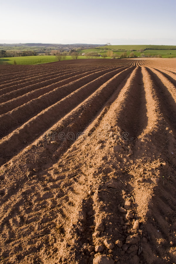 Free Ploughed Field Royalty Free Stock Photos - 8992748