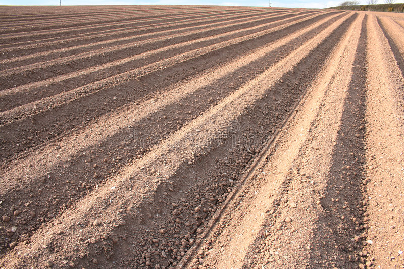 Ploughed Field Furrows Stock Image