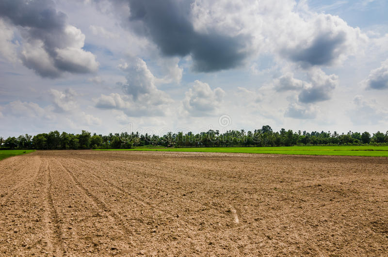 Download Ploughed field stock image. Image of country, scene, earth - 39514329