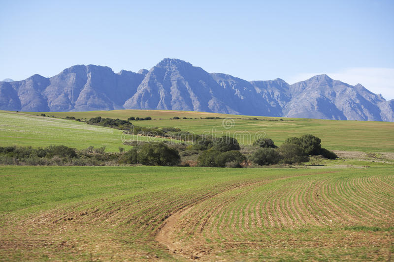 Download Ploughed Fields In The Western Cape Royalty Free Stock Photography - Image: 21373177