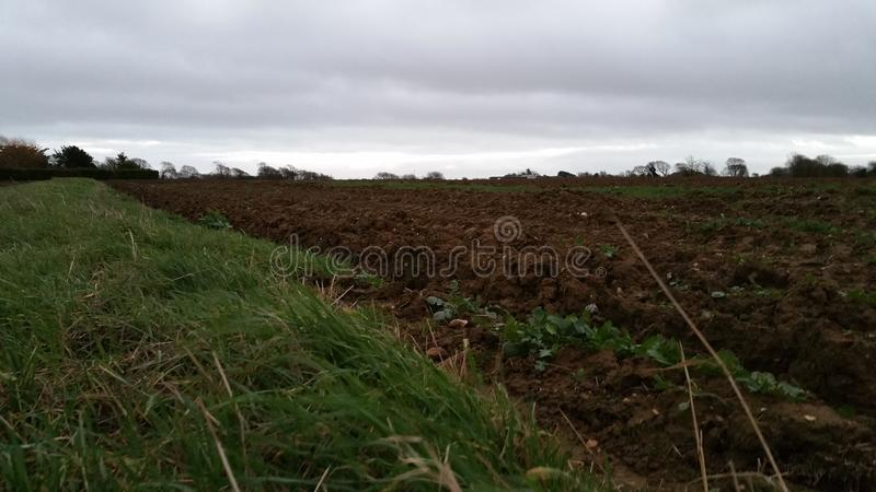 Ploughed Fiels stock image