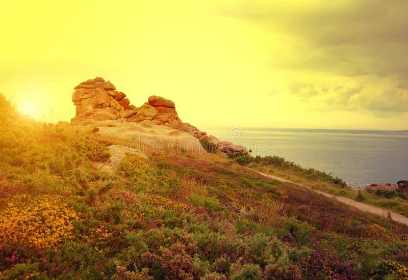 Ploumanach, розовое побережье гранита в Бретани стоковое изображение rf