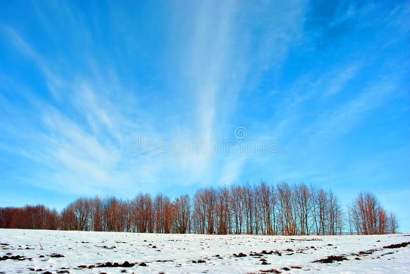 Plowded field covered with snow, trees without leaves line on horizon, winter landscape, blue cloudy sky. Plowded field covered with snow, trees without leaves royalty free stock images