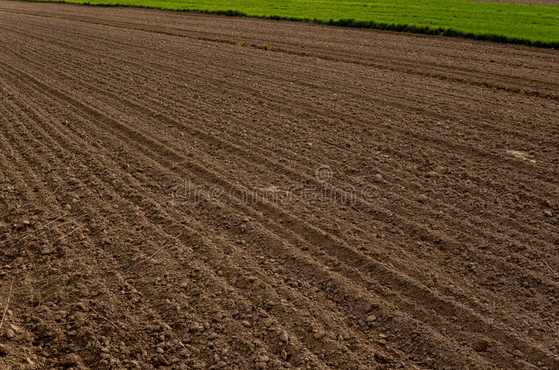 Plowed empty field. Empty field after harrowing during early spring royalty free stock photos