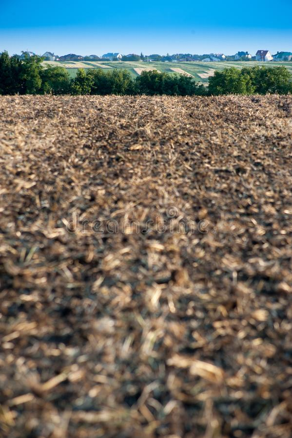Plowed farmlands, arable fields. And agro landscape stock photo