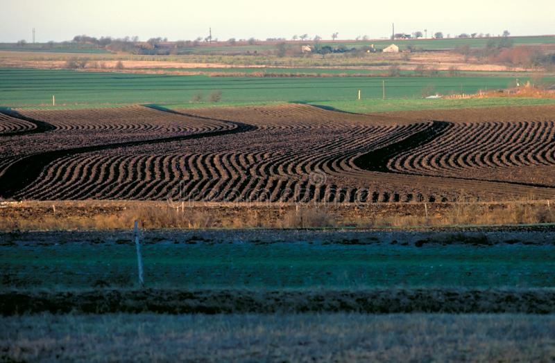Download Plowed Field stock image. Image of farm, curves, rows, fence - 51819