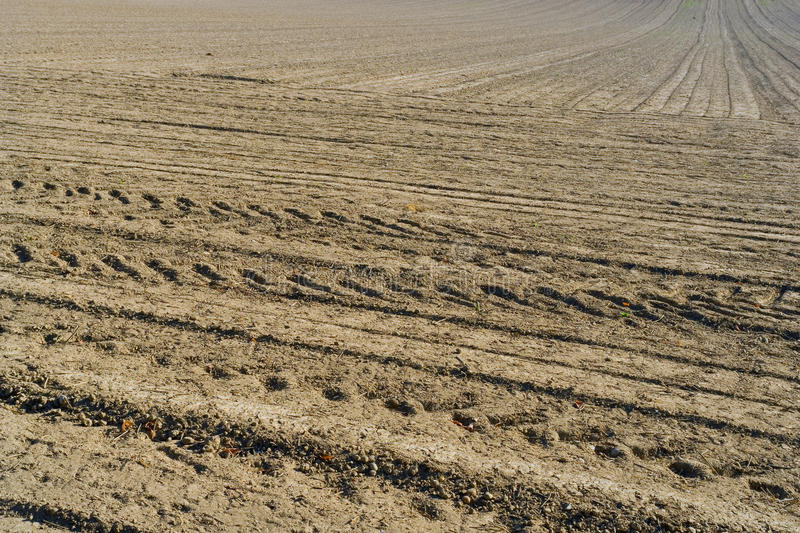 Download Plowed field background stock image. Image of fresh, repetition - 14947473