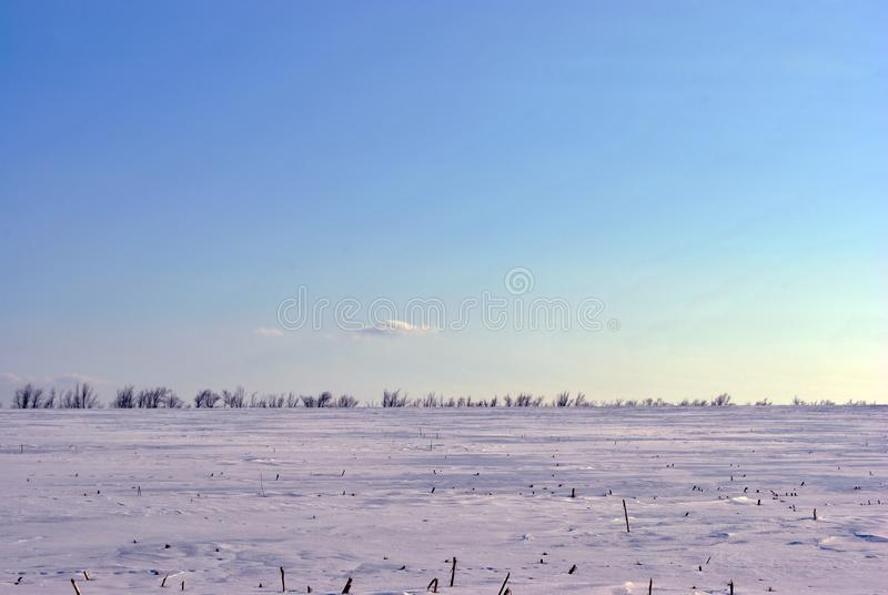 Plowed field covered with snow, line of poplar trees without leaves on the hills on horizon, winter landscape, sky. Plowed field covered with snow, line of royalty free stock images