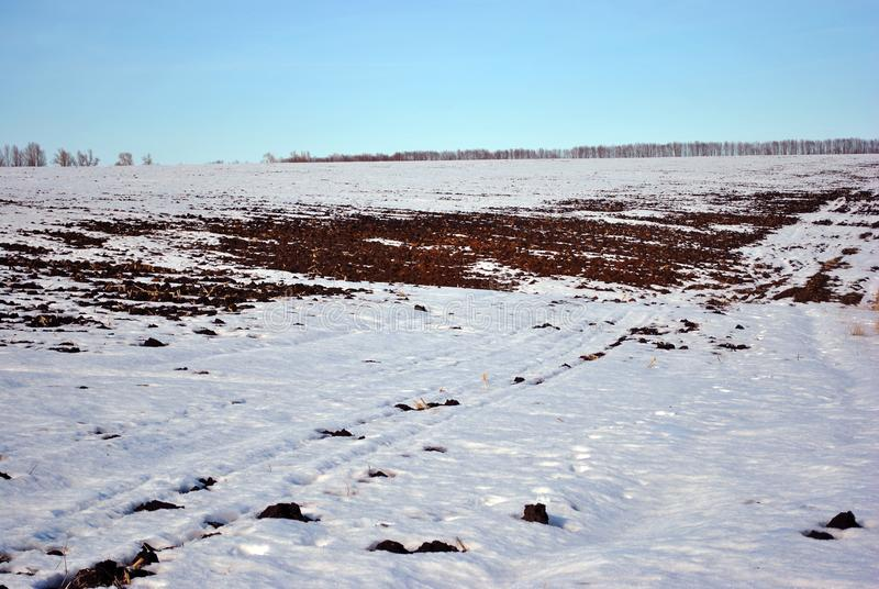 Plowed field covered with snow, trees without leaves line on horizon, winter landscape, blue sky. Plowed field covered with snow, trees without leaves line on stock images