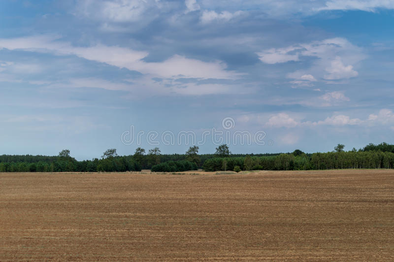 Plowed field in late summer time with trees behind and blue sky royalty free stock image