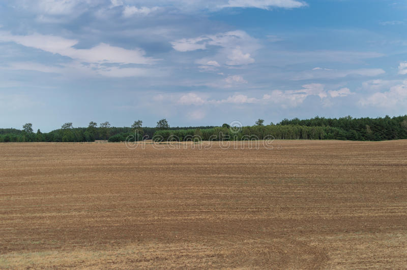 Plowed field in late summer time with trees behind and blue sky.  royalty free stock photos