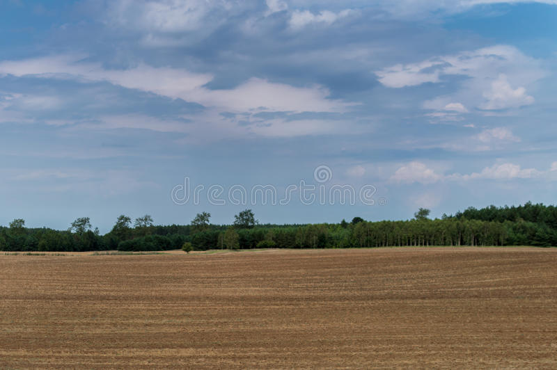 Plowed field in late summer time with trees behind and blue sky.  stock images