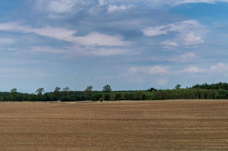 Plowed field in late summer time with trees behind and blue sky.  royalty free stock photo